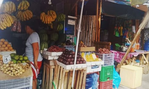 Top 10 Cebu Fruits