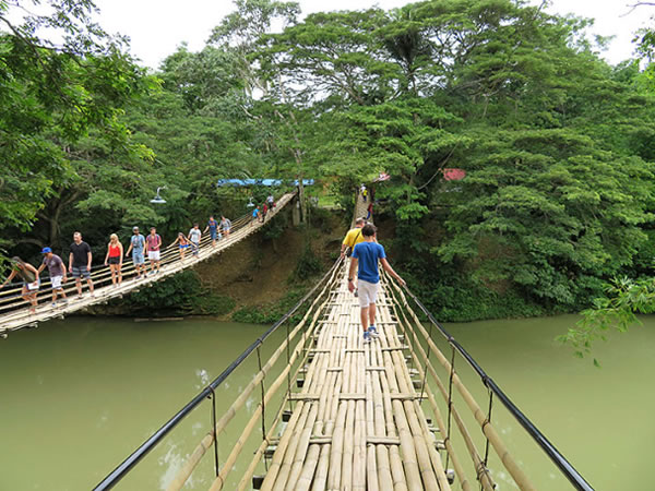 Sevilla Bamboo Hanging Bridge